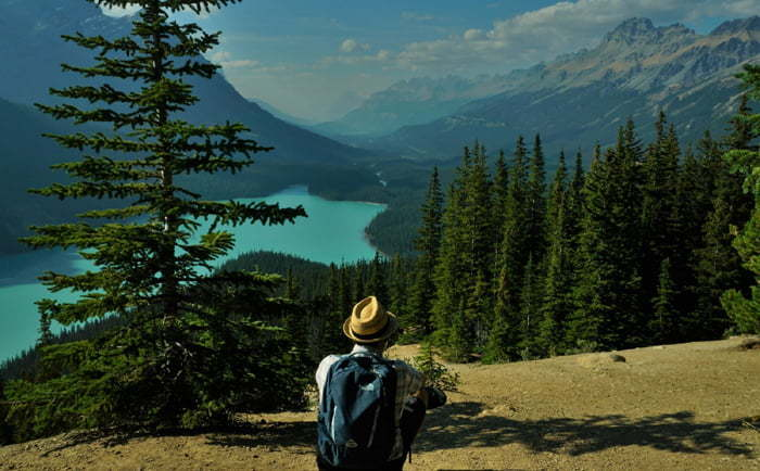 Peyto Lake sur la Promenade des Glaciers