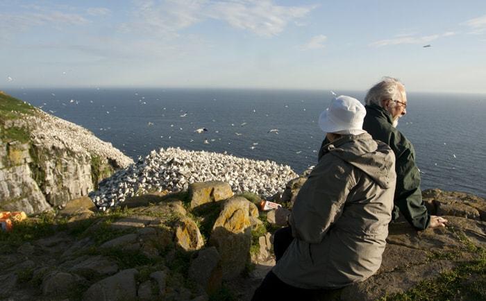 Réserve écologique de Cape St-Mary's