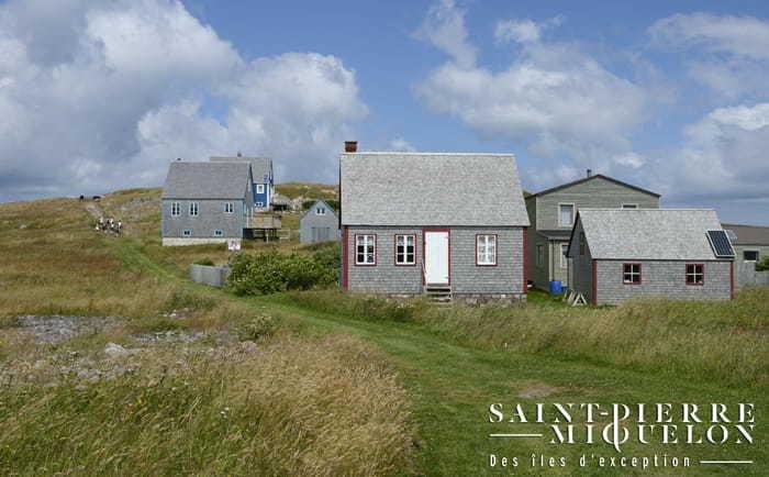 Île aux Marins à St-Pierre & Miquelon