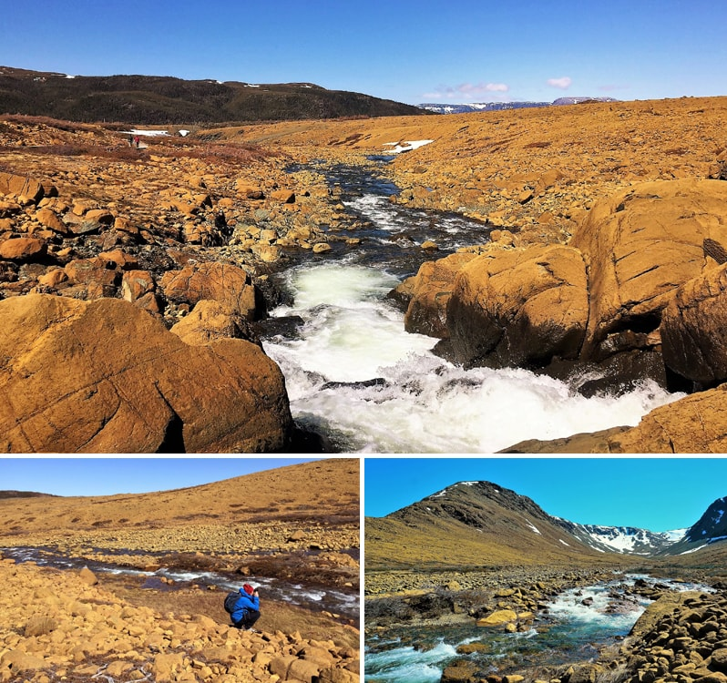 Paysages insolites aux Tablelands dans le parc national du Gros-Morne