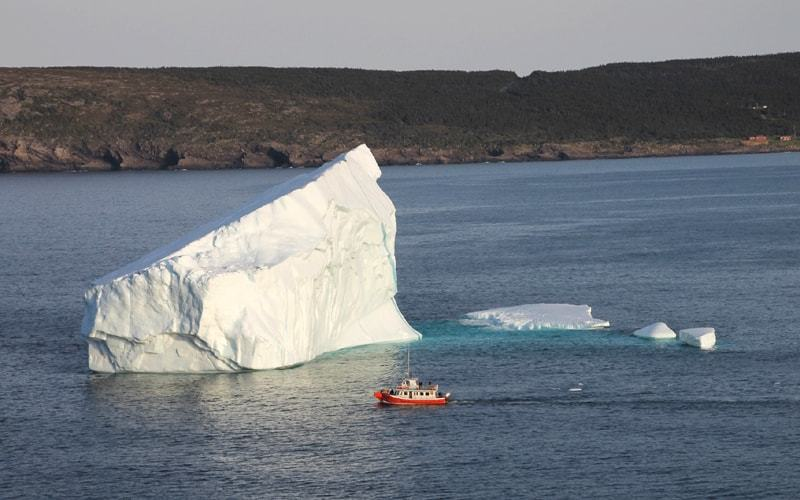 Excursion en bateau pour voir les icebergs à Twillingate