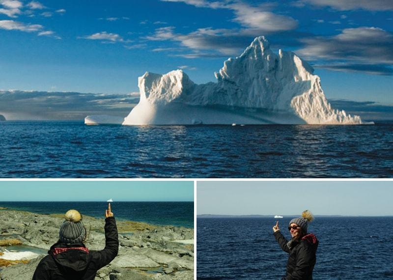 Terre-Neuve : observation des icebergs àTwilingate