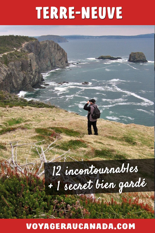 12 lieux incontournables à visiter à Terre-Neuve