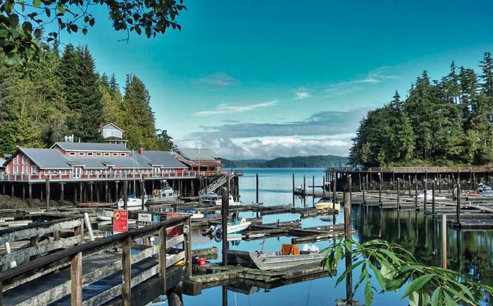 Marina du village de Telegraph Cove