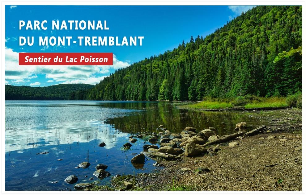 Parc national du Mont-Tremblant : le sentier du lac Poisson