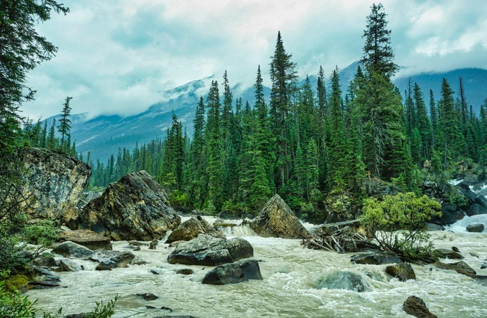 Là où se rencontrent les rivières Yoho et Kicking Horse