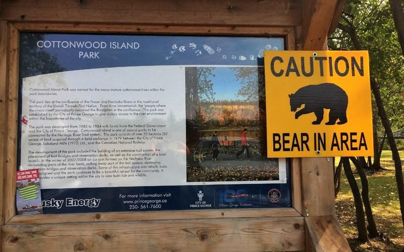 Panneau signalant la présence d'ours noirs dans le parc Cottonwood Island