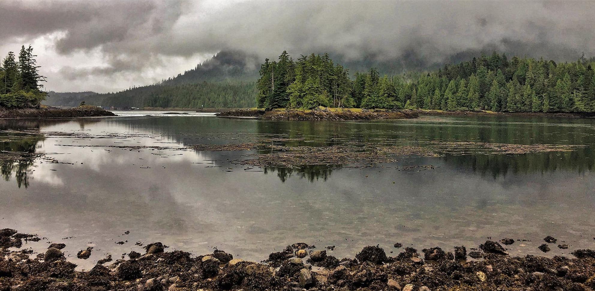 Lac et forêt sous un ciel gris au sentier Butze Rapids