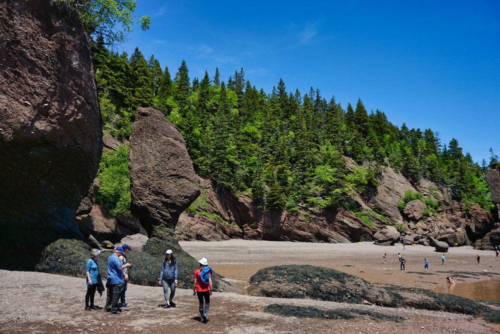 Hopewell Rocks à marée basse