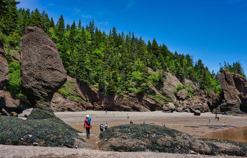 Christine marchant sur la plage à Hopewell Rocks