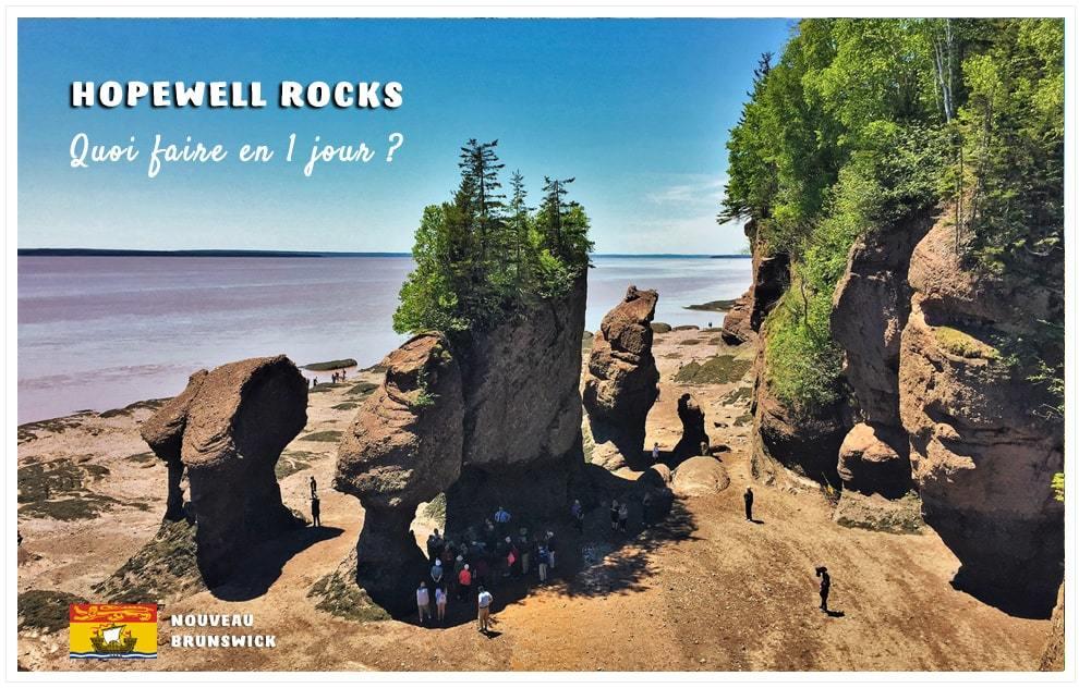 Vue sur les rochers de Hopewell Rocks à marée basse